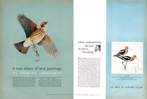 Article Preview: tells about the boom in bird watching, September 1957 | Maclean's
