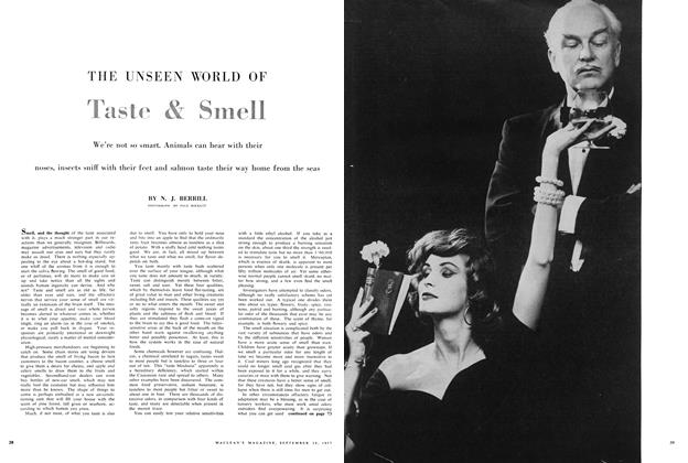 Article Preview: THE UNSEEN WORLD OF Taste & Smell, September 1957 | Maclean's