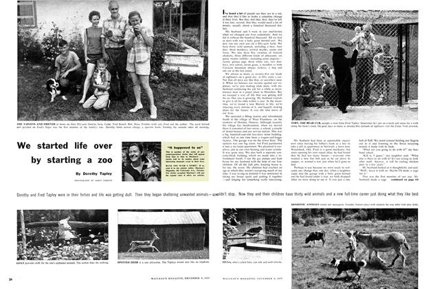 Article Preview: We started life over by starting a zoo, November 1957 | Maclean's