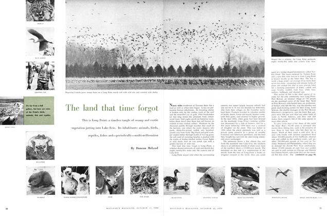Article Preview: The land that time forgot, October 1958 | Maclean's