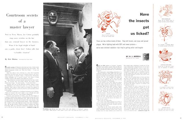 Article Preview: Have the insects got us licked?, November 1958 | Maclean's