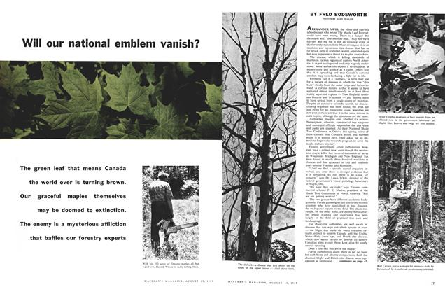 Article Preview: Will our national emblem vanish?, August 1959 | Maclean's