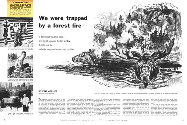 Article Preview: We were trapped by a forest fire, September 1959 | Maclean's