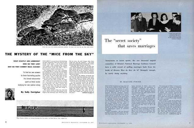 "Article Preview: THE MYSTERY OF THE ""MICE FROM THE SKY"", November 1959 