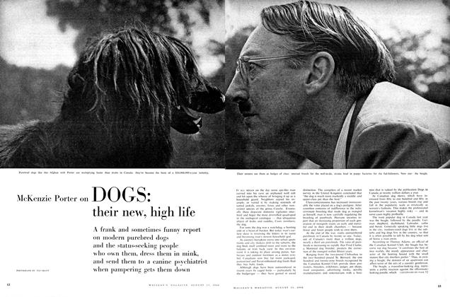 Article Preview: DOGS: their new, high life, August 1960 | Maclean's
