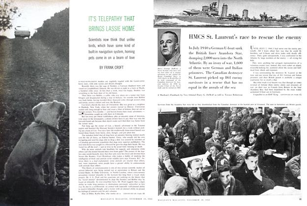 Article Preview: HMCS St. Laurent's race to rescue the enemy, November 1960 | Maclean's