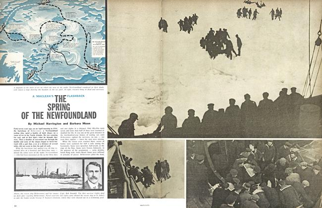 Article Preview: THE SPRING OF THE NEWFOUNDLAND, January 1961 | Maclean's