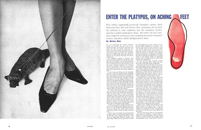 Article Preview: ENTER THE PLATYPUS, ON ACHING FEET, May 1961 | Maclean's