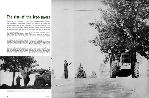 Article Preview: The rise of the tree-savers, November 1961   Maclean's