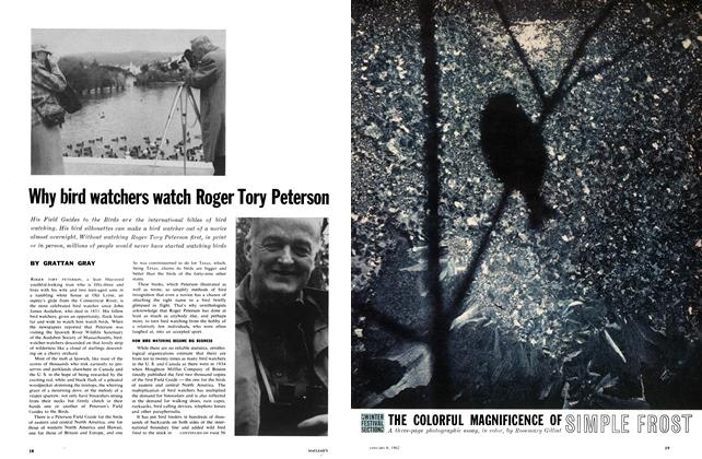 Article Preview: Why bird watchers watch Roger Tory Peterson, January 1962 | Maclean's