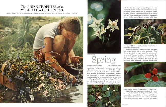 Article Preview: The PRIZE TROPHIES of a WILD FLOWER HUNTER, March 1962 | Maclean's