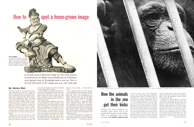 Article Preview: How the animals in the zoo get their kicks, June 1962 | Maclean's