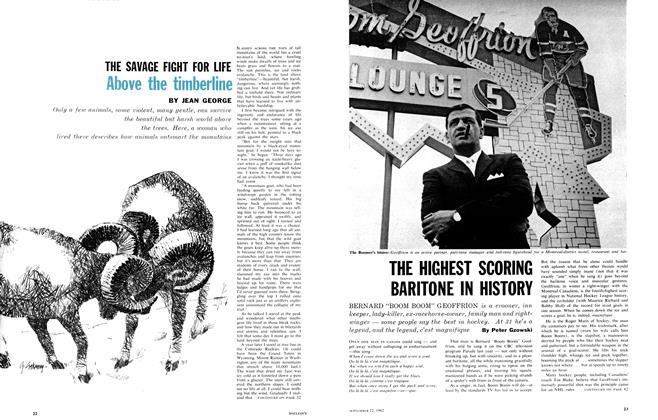 Article Preview: THE SAVAGE FIGHT FOR LIFE Above the timberline, September 1962 | Maclean's