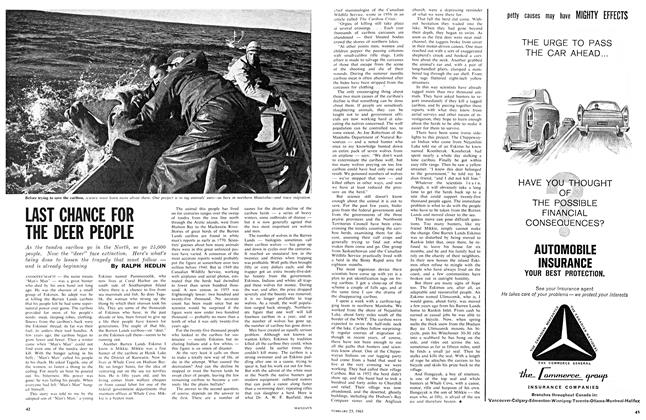 Article Preview: LAST CHANCE FOR THE DEER PEOPLE, February 1963 | Maclean's