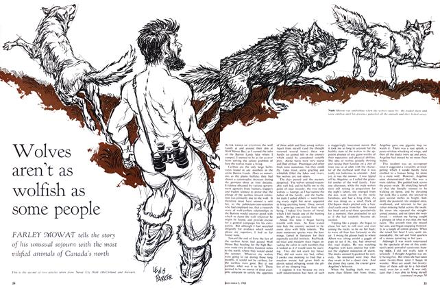 Article Preview: Wolves aren't as wolfish as some people, December 1963 | Maclean's