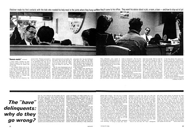 """Article Preview: The """"have"""" delinquents: why do they go wrong?, January 1964   Maclean's"""