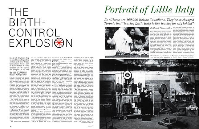 Article Preview: Portrait of Little Italy, March 1964 | Maclean's