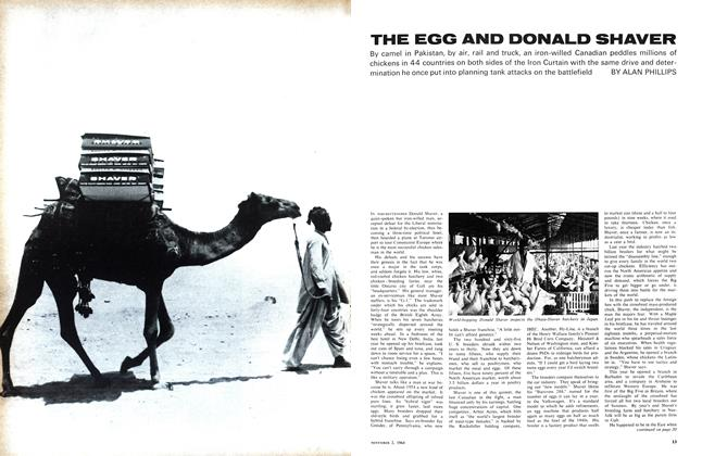 Article Preview: THE EGG AND DONALD SHAVER, November 1964 | Maclean's