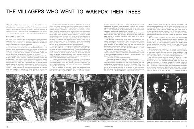 Article Preview: THE VILLAGERS WHO WENT TO WAR FOR THEIR TREES, January 1965 | Maclean's