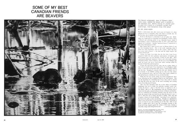 Article Preview: SOME OF MY BEST CANADIAN FRIENDS ARE BEAVERS, May 1965 | Maclean's
