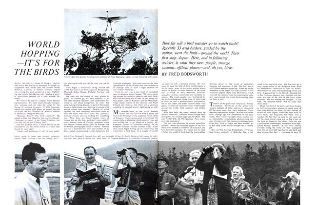 Article Preview: WORLD HOPPING —IT'S FOR THE BIRDS, October 1965 | Maclean's
