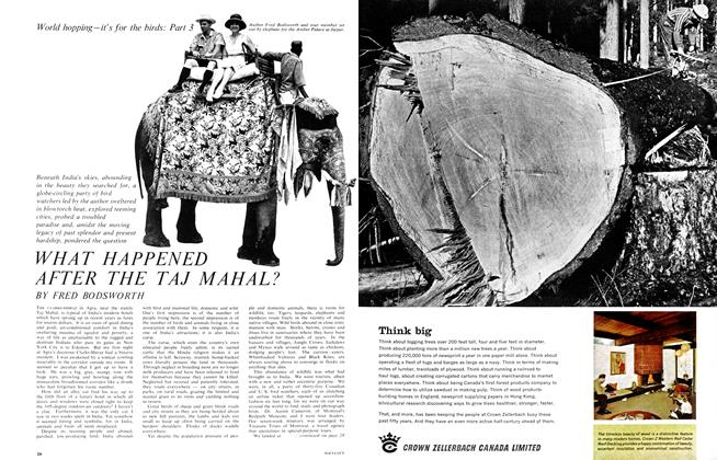 Article Preview: WHAT HAPPEND AFTER THE TAJ MAHAL?, November 1965 | Maclean's
