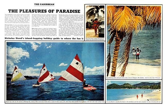 Article Preview: THE PLEASURES OF PARADISE, February 1967 | Maclean's