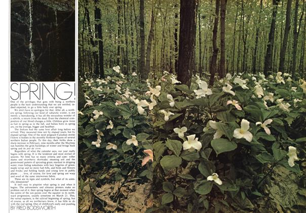 Article Preview: SPRING!, May 1971 | Maclean's