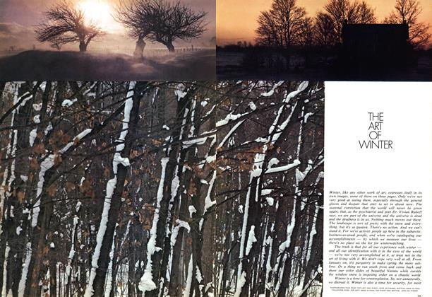 Article Preview: THE ART OF WINTER, January 1972 | Maclean's