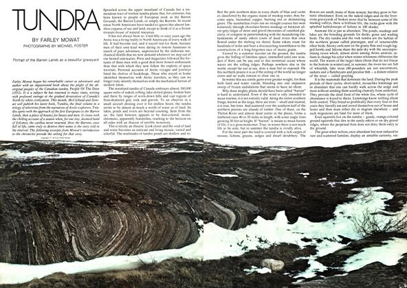 Article Preview: TUNDRA, May 1973 | Maclean's