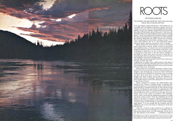 Article Preview: ROOTS, August 1973 | Maclean's