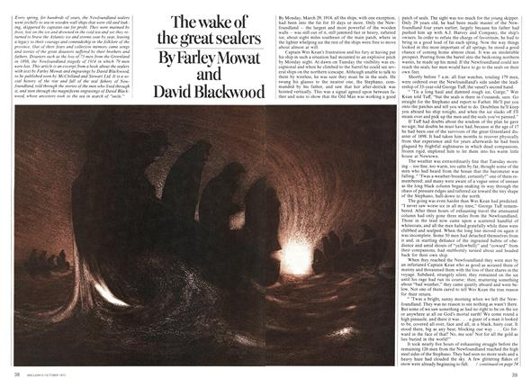 Article Preview: The wake of the great sealers, October 1973 | Maclean's