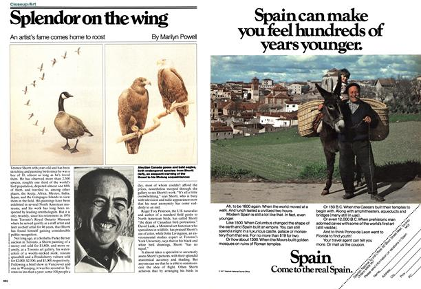 Article Preview: Splendor on the wing, MAY 16,1977 1977 | Maclean's