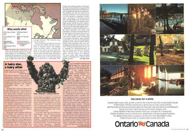 Article Preview: A hairy star, a hairy affair, May 1978 | Maclean's