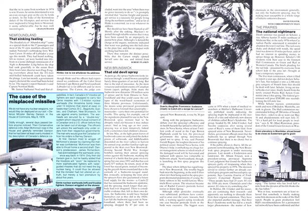 Article Preview: The national nightmare, June 1978 | Maclean's