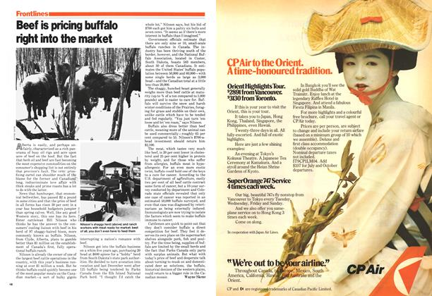Article Preview: Beef is pricing buffalo right into the market, March 1979 | Maclean's