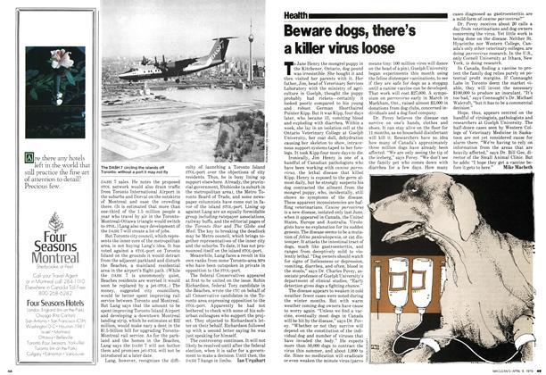 Article Preview: Beware dogs, there's a killer virus loose, April 1979 | Maclean's
