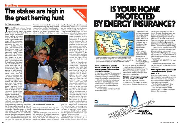 Article Preview: The stakes are high in the great herring hunt, April 1979 | Maclean's