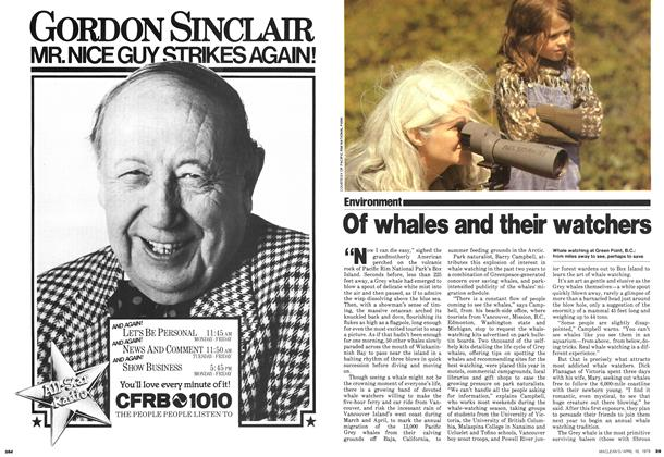 Article Preview: Of whales and their watchers, April 1979 | Maclean's