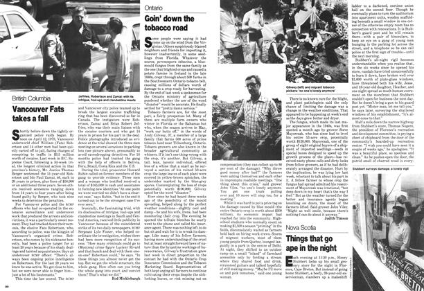 Article Preview: Goin' down the tobacco road, August 1979 | Maclean's
