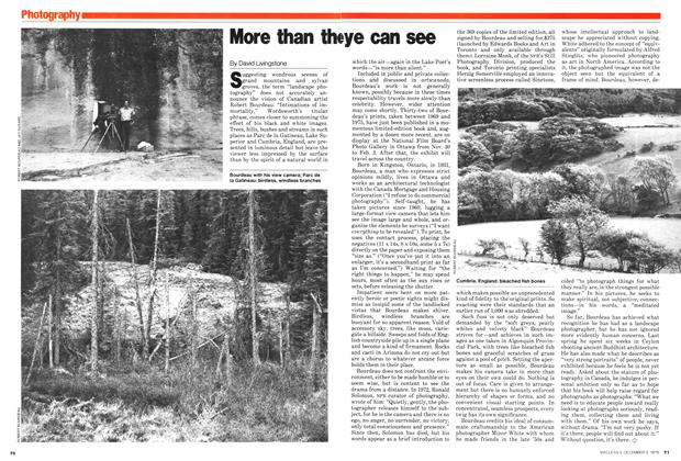 Article Preview: More than the eye can see, December 1979 | Maclean's