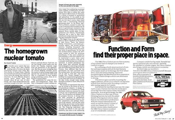 Article Preview: The homegrown nuclear tomato, February 1980 | Maclean's