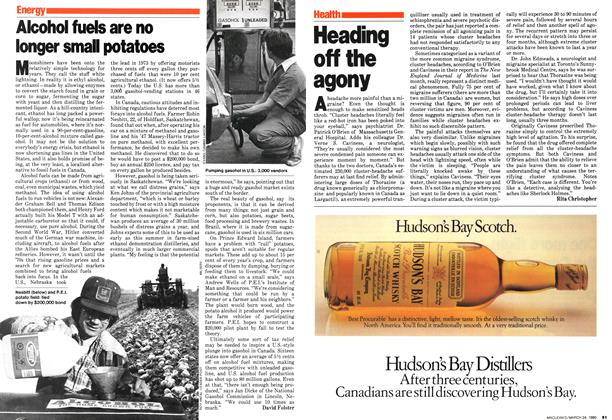 Article Preview: Alcohol fuels are no longer small potatoes, March 1980 | Maclean's