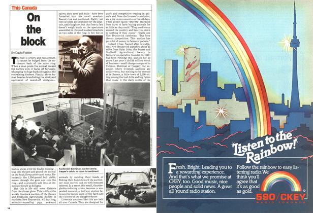 Article Preview: On the block, April 1980 | Maclean's