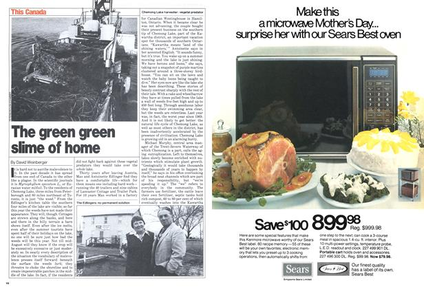 Article Preview: The green green slime of home, April 1980 | Maclean's