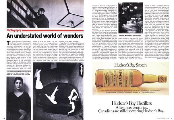 Article Preview: An understated world of wonders, June 1980 | Maclean's