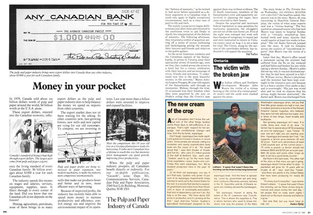 Article Preview: The new cream of the crop, June 1980 | Maclean's