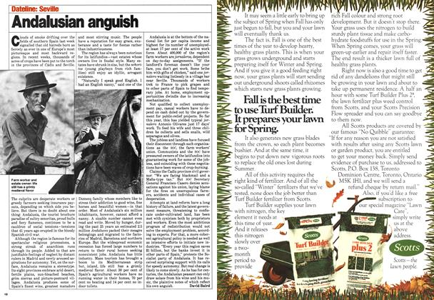 Article Preview: Andalusian anguish, August 1980 | Maclean's