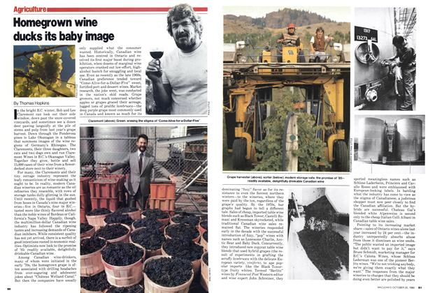 Article Preview: Homegrown wine ducks its baby image, October 1980 | Maclean's
