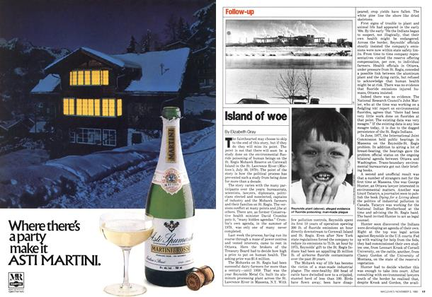 Article Preview: Island of woe, November 1980 | Maclean's